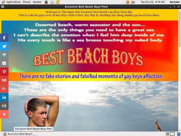 Best Beach Boys Free Porn