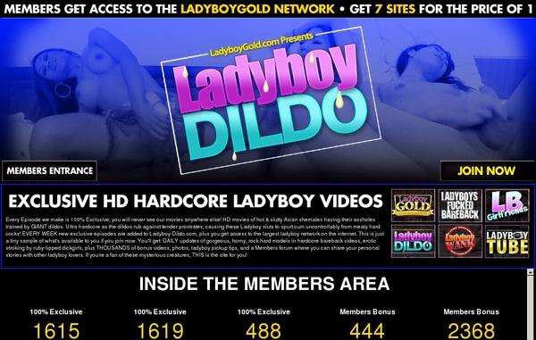 Ladyboy-dildo.com Free Access